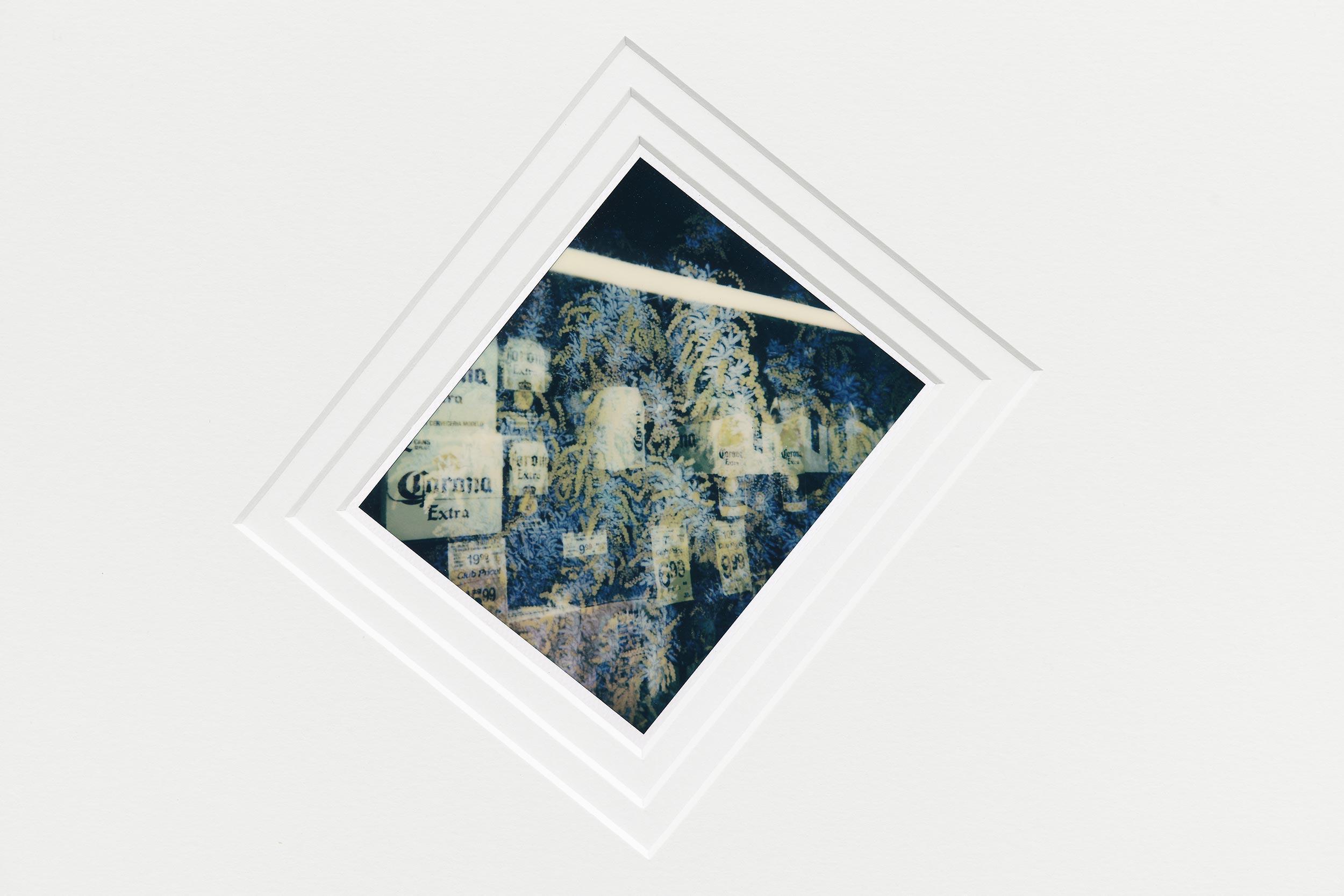 Cyprien Gaillard, exposition